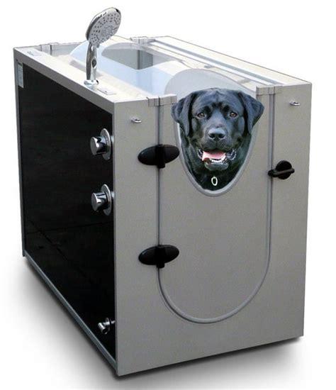 dog bathtubs for home dog bath tub for home dog pet photos gallery gvbxrjp2x5