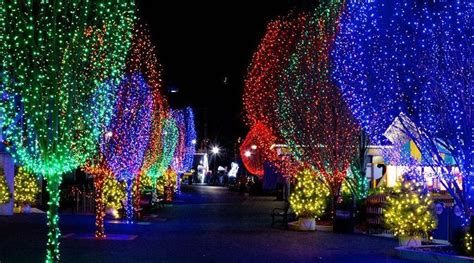 hershey park lights hersheypark candylane discounted tickets at