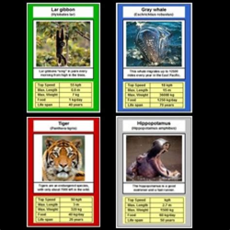 animal trading card template free printable card animal trumps hubpages