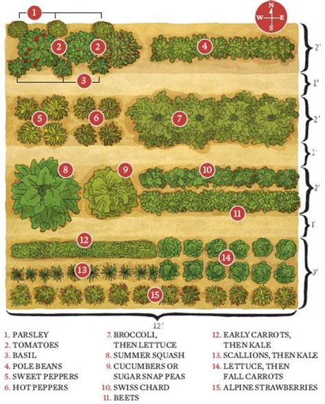 layout design for vegetable garden how to start a garden save money and eat fresh