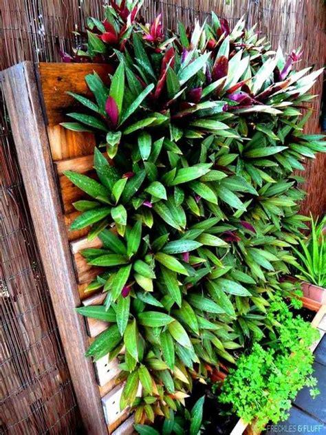 jardin vertical exterieur