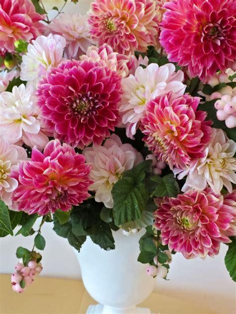 191 best images about delightful dahlias on pinterest mike reid dahlia bouquet and purple dahlia