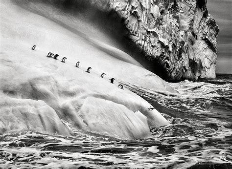 sebastio salgado from my breathtaking photography by photojournalist sebasti 227 o salgado