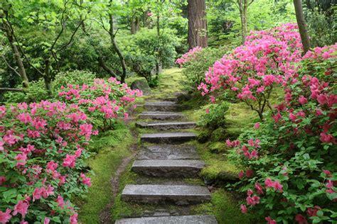 walk   natural garden portland japanese garden