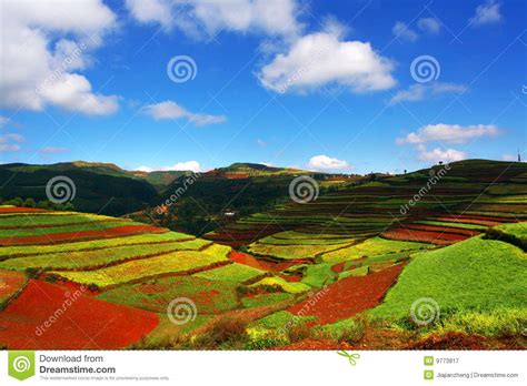 colorful hill colorful hill royalty free stock photography image 9773817