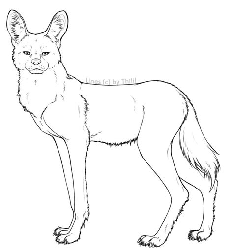 wild dog coloring page how to draw a african wild dog pencil art drawing
