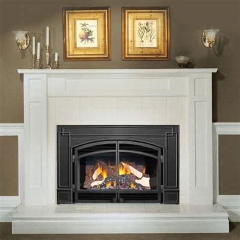 arched gas fireplace insert napoleon gi3600 natural gas fireplace insert with arched