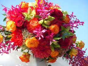 lovely flowers for mothers flowers magazine