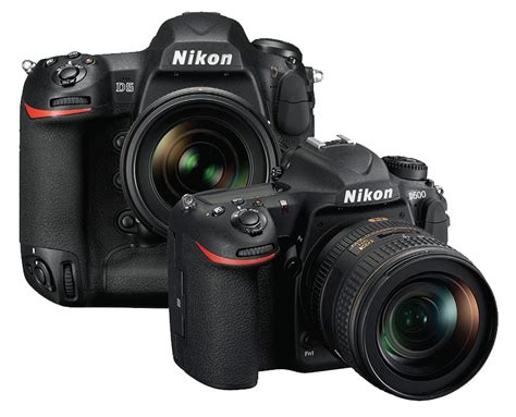 best dslr for photography best for wildlife photography about