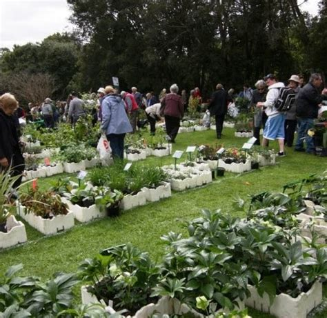 botanic gardens plant sale botanic gardens melbourne annual plant sale the culture concept circle