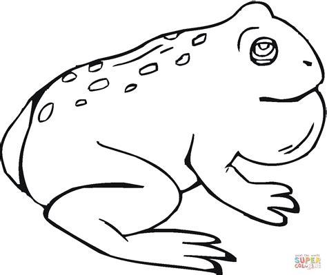 imagenes de sapos faciles para dibujar dibujo de una sapo croando para colorear dibujos para