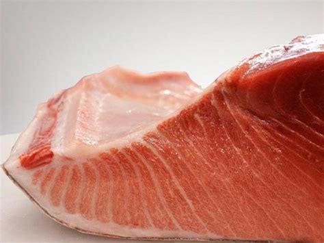 Fish Tuna Loin southern bluefin tuna belly loin sashimi grade frozen gourmet seafood nz
