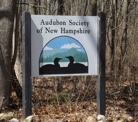 audubon society of nh girard at large