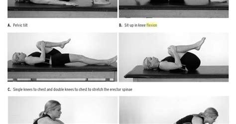 nishar bashas blog williams flexion exercise