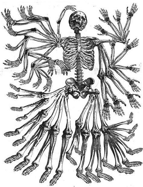 Artist?   Lovely Monsters en 2019   Pinterest   Squelette