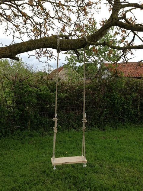 tree rope swings traditional garden tree swing enjoy