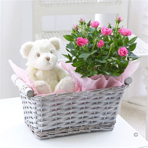 Flower Gift Delivery by Teddy Gift Basket Florist Isle Of Wight