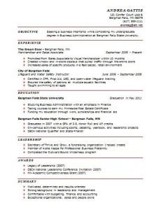 best professional resumes