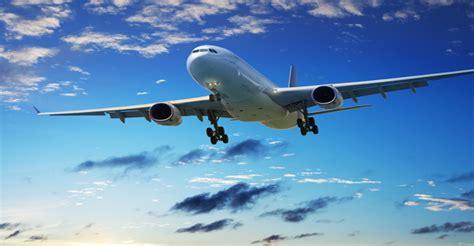 alitalia trasporto animali in cabina trasporto animali in aereo viaggi in aereo con e