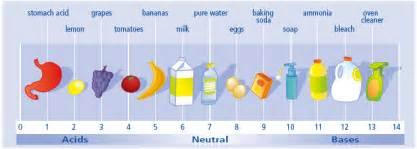 north salem high chemistry acids and bases