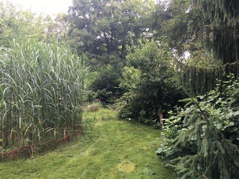 Garten Arbeiten by Im Garten Arbeiten Das Gr 252 Ne Gl 252 Ck 40 Something De