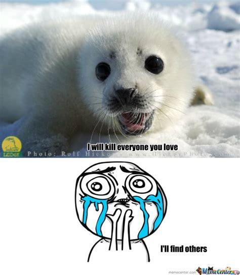Baby Seal Meme - image gallery harp seal meme
