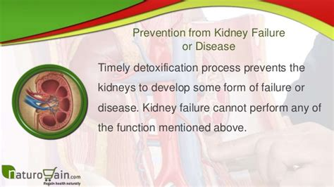 Best Ways To Detox Kidneys by Top 10 Health Benefits Of Kidney Cleansing And Ways To