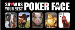 poker tournament and cocktail party prizes farm sanctuary