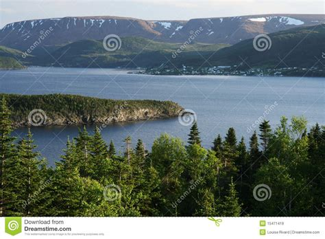 Landscape Pictures Of Newfoundland Newfoundland Landscape Stock Image Image Of Forest