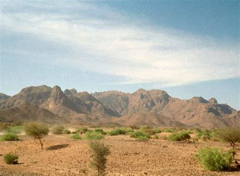 air mountains niger africa address nature wildlife