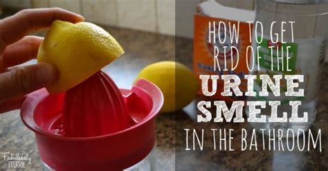 urine smell in bathroom 20 bathroom cleaning hacks you need to adapt for a sparkling and fragrant space
