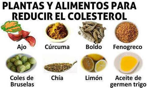 comidas  colesterol dietas de nutricion  alimentos