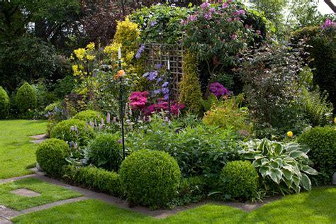 lavendel im vorgarten