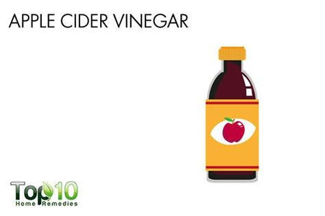 apple cider vinegar for dogs home remedies for bladder infections in dogs top 10 home