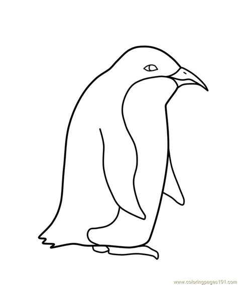 printable penguin pictures coloring pages penguin birds gt penguin free printable