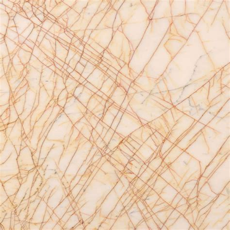 Golden Spider   Marble Trend   Marble, Granite, Tiles