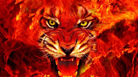 fire wallpapers hd pixelstalknet