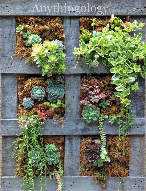 Hanging Wall Planter by Anythingology Vertical Pallet Garden Update