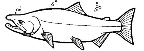 salmon template bears catching salmon coloring pages coloring pages
