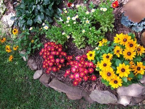 full sun flower beds flower bed ideas for full sun pictures beautiful black