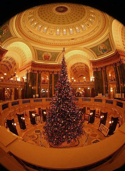 fun christmas tree places in se wisconsin 17 best images about wisconsin on the cheese lakes and restaurants