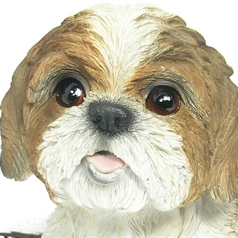 shih tzu ornament shih tzu resin garden ornament 163 24 99 garden4less uk shop