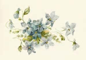 antique images free flower clip art vintage illustration bunch blue forget flowers