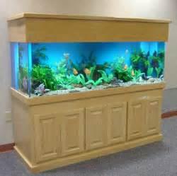 Custom and Standard Aquariums