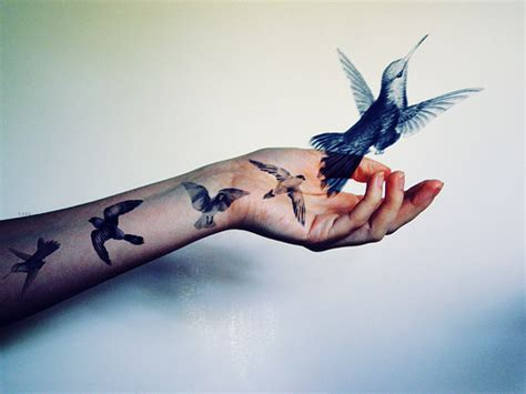 tattoo meaning birds flying birds fly tattoo image 343549 on favim com