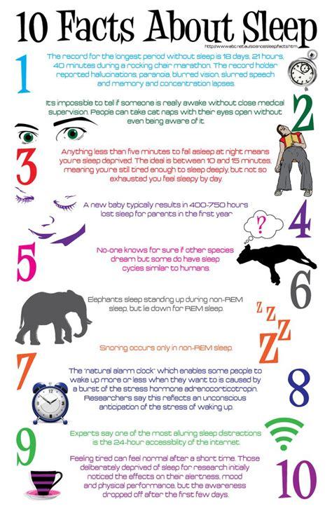 Health Fit Iii 10 facts about sleep infographic facts
