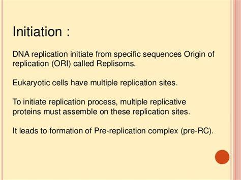 Cd Ori Steps Step One 1 dna replication eukaryotes
