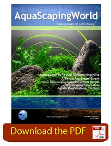 aquascaping magazine aquascaping world magazine july 2008