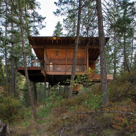 Tree House Plans On Stilts Cottage On Stilts By Andersson Wise Architects Modern House Designs