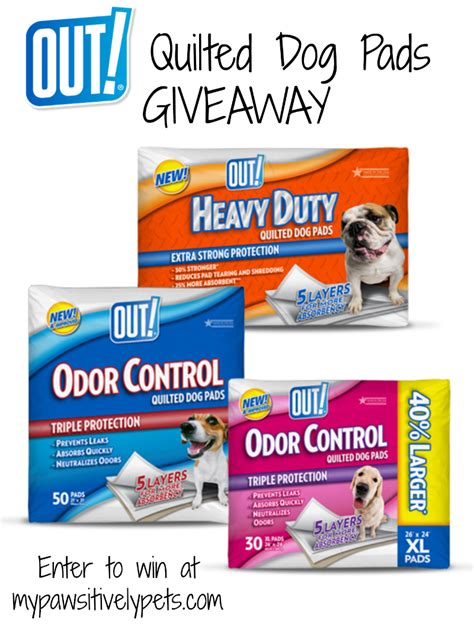 Dog Giveaway - 6 uses for pet pee pads pawsitively pets